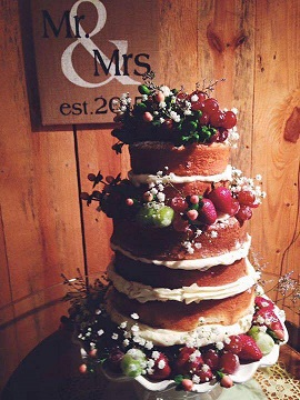 Naked Cake Garnished With Fruit